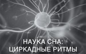 Наука сна: циркадные ритмы